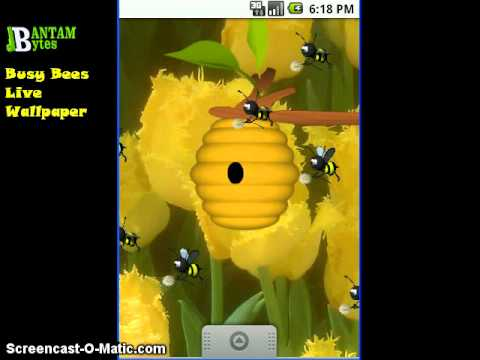 Video of Busy Bees Live Wallpaper