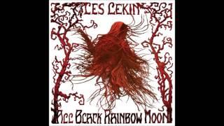 Les Lekin - Useless (Instrumental Audio Track)
