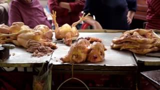 Matanza de pollos en mercados // Slaughter of chickens in markets // México, 2015
