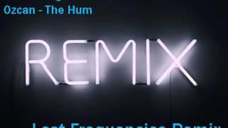 Dimitri Vegas & Like Mike vs Ummet Ozcan - The Hum (Lost Frequencies Remix )