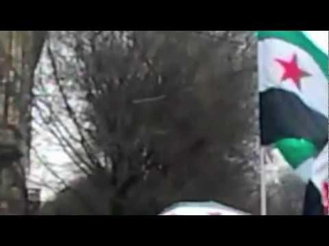 La comunità siriana contro Assad