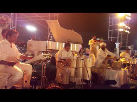 Vaibhav Pewal - White Theme Band...