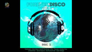 Forever Disco - Top Vintage Series (CD2) (HQ Audio)