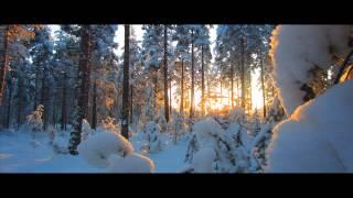 Armin van Buuren feat. Fiora - Waiting For The Night (Beat Service Remix) [ASOT 594]