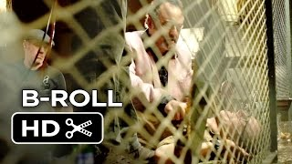 Hector and the Search For Happiness B-ROLL 2 (2014) - Simon Pegg, Rosamund Pike Movie HD