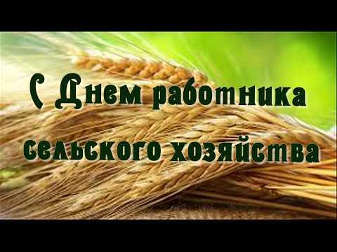 Поздравление с Днем работника сельского хозяйства.  Видео-открытка