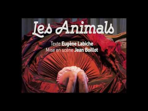 Les Animals: rencontre avec Jean Boillot