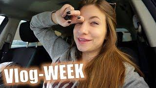 НОВЫЙ ПИТОМЕЦ | Понедельник | Vlog WEEK 23/18