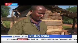 Kilimo Bora nchini Kenya | Jukwaa la KTN