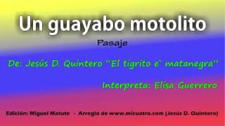 Un guayabo motolito -  Elisa Guerrero