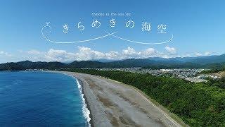 【徳島でサンゴの産卵?!】祝☆完成【4K海陽町PR動画!】