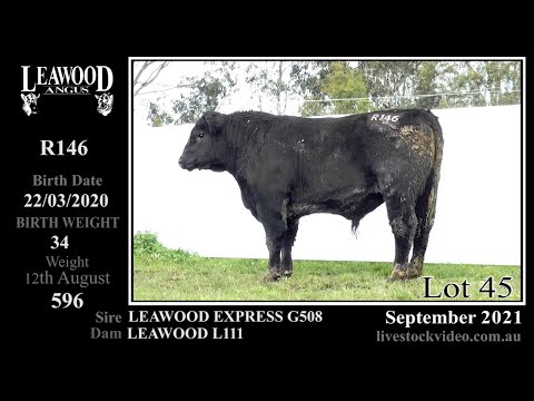 LEAWOOD EXPRESS R146