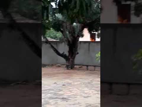 Acidente em Acauã: uma casa incendiada