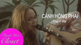 Cánh Hồng Phai   Thanh Ha's BackYard Jams   Live Acoustic