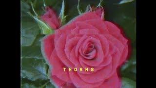 Bonnie McKee  Thorns Lyric Video