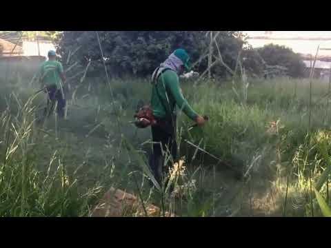 Prefeitura limpa 150 terrenos sujos e multa proprietários; multas aplicadas já passa os R$ 200 mil