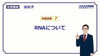 生物基礎遺伝子7RNAについて13分