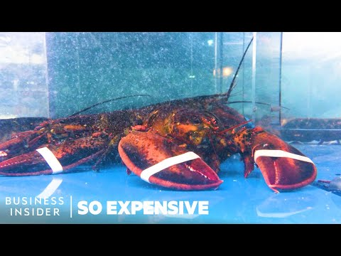 How Did Lobster Become so Expensive?
