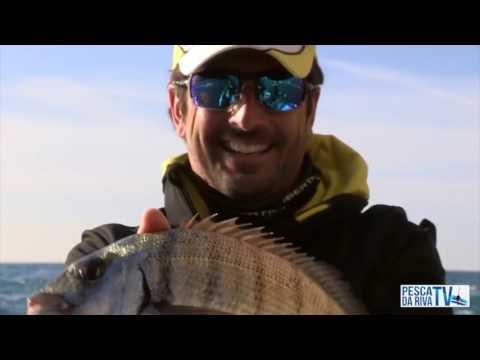Pesca di video ripus