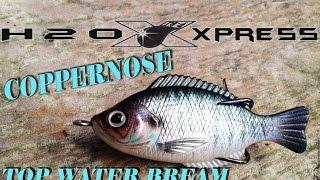 LIVE TARGET Sunfish KnockOFF  $5 99