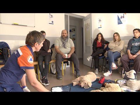 VIDÉO. Apprendre les gestes qui sauvent votre chien