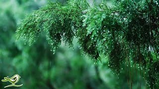 """Calming Piano Music with Rain & Thunder Sounds for Sleep or Relaxing • """"Rainy Day"""""""