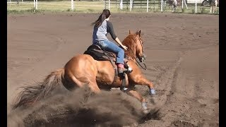 Barrel Racing 1st Series 2018 From McHenry County Saddle Club