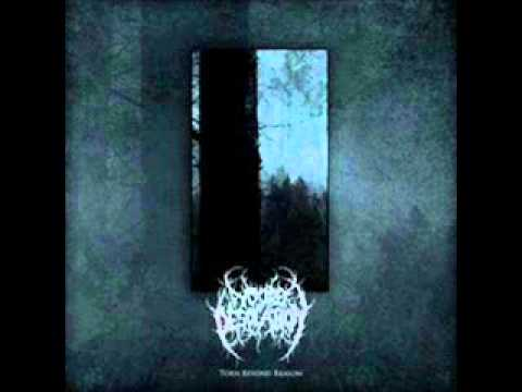 Woods of Desolation - Torn Beyond Reason online metal music video by WOODS OF DESOLATION