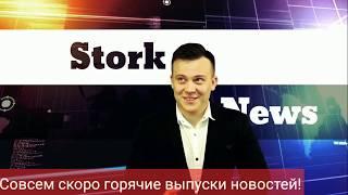 StorkNews. Горячие новости. Свежие новости. Актуальное. Веселое видео. Политика. Звезды. Откровения