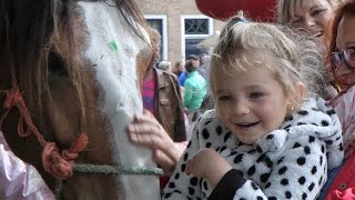 Paardenmarkt Heenvliet 2015