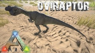 Ark survival evolved afk egg hatching any egg anywhere anytime ark survival evolved oviraptor useful or disappointing malvernweather Images