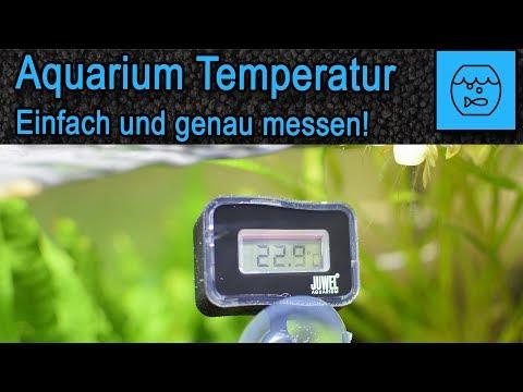 Aquarium Wassertemperatur einfach und genau messen - Juwel Digitales Thermometer 2.0 -  Unboxing
