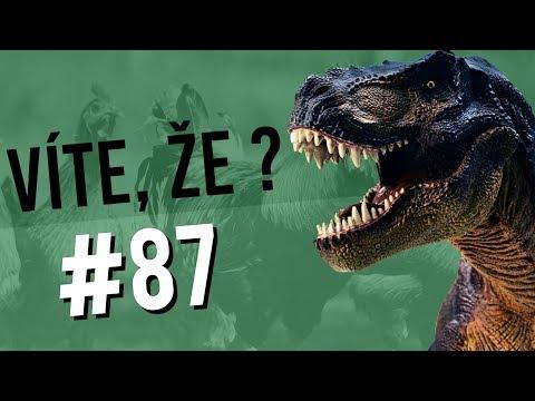 #87 ● VÍTE, ŽE...?