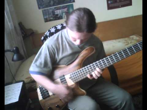 zemobass hrubostrun solo bass player - AVE Šmarja doublethumb