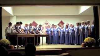 preview picture of video 'Jótékonysági Est a Református Templom tatarozásáért'