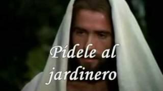 "Video thumbnail of ""En victoria . Liz Enid Polanco"""