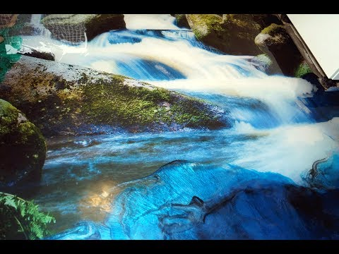 3D Floor Kunstharz Bodenbeschichtung Design Resin Epoxy Waterfall Tree Slices ToSaLignea