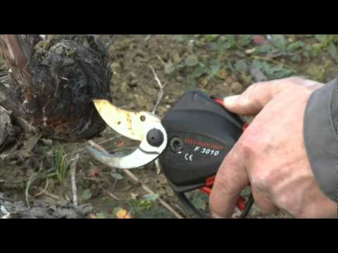 Infaco - Podadora electrónica F3010 en viticultura ES