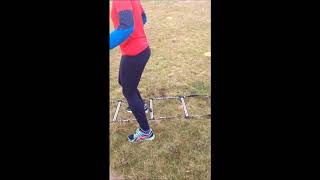 Agility ladder exercises