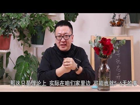 , title : '情人节收到鲜花怎么保鲜,提前学有备无患【坤哥玩花卉】