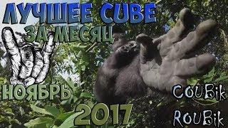 Лучшее видео по версии COUBik за Месяц Ноябрь 2017