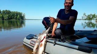Рыбалка кама июнь как и на что