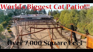 Worlds Largest Cat Patio (Catio) - Over 7000 Square Feet!
