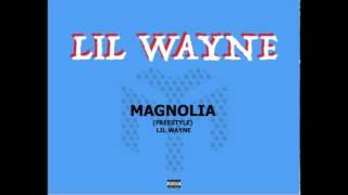 <b>Lil Wayne</b>  Magnolia Freestyle