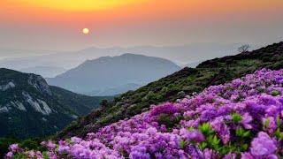 산청군 문화관광(Full/국문9분) - 한류ibc