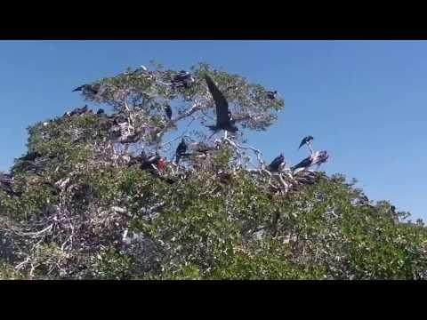 Eco Tours Reserve Sian Ka'an Mexico Tulum
