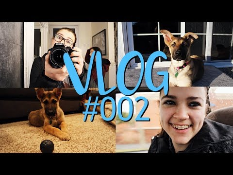 Vlog #002 || The Puppy Life