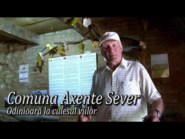 Odinioara la culesul viiilor: Axente Sever