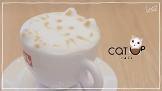 คาเฟ่แมว Catup Cafe ร้านเล็กๆ แต่แมวน่ารักมากกกกก