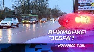 Соблюдение правил на «зебрах» в Псковском микрорайоне проинспектировали дорожные полицейские